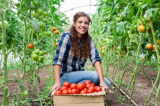Tips for Farmers and Farm Tax Returns